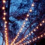 yaz için bahçe ağaç aydınlatmaları