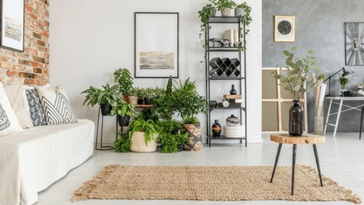 IKEA mobilya mağazasının 2019 vitrin koleksiyonu çok şık